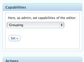 Editor capabilites setting box