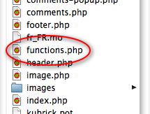 Functions file in theme's folder